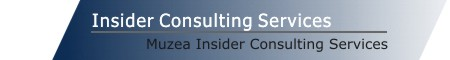 Muzea Insider Consulting Services